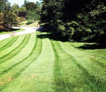 Lawn Maintenance Knoxville Tn Landscaping Oak Ridge Tn